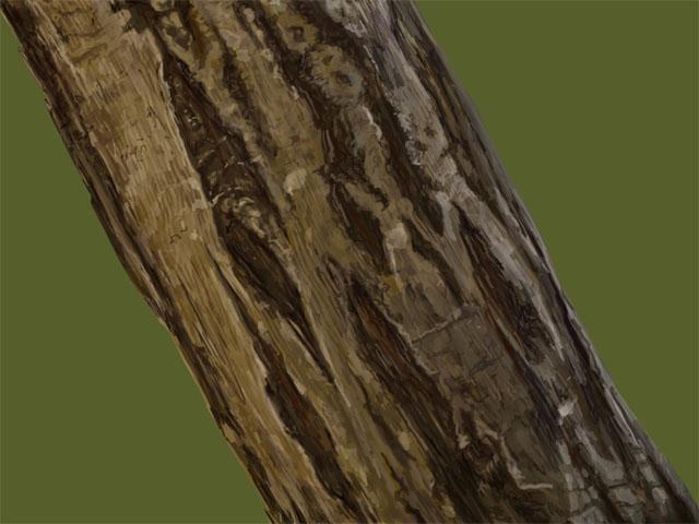 木の幹を描いてみる