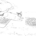 猫とマンホール