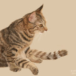 猫の絵を描き終わりました(Twitter制作過程まとめ後編)