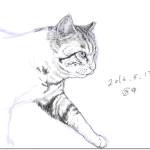 猫さん描きかけ