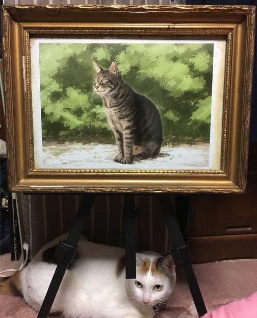 猫の絵をA4印刷して額に入れてみた