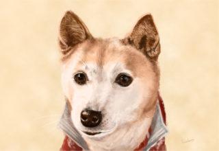 犬の絵完成版